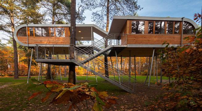 Casa rbol en b lgica vivir en el aire for Casa del arbol cuenca