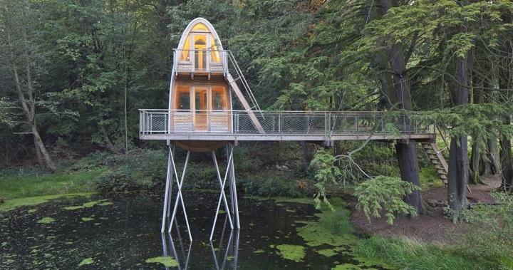 La casa del arbol Baumraum
