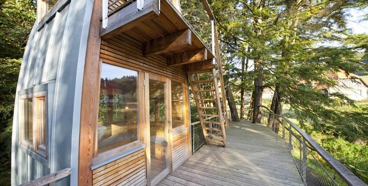 La casa del arbol Baumraum1