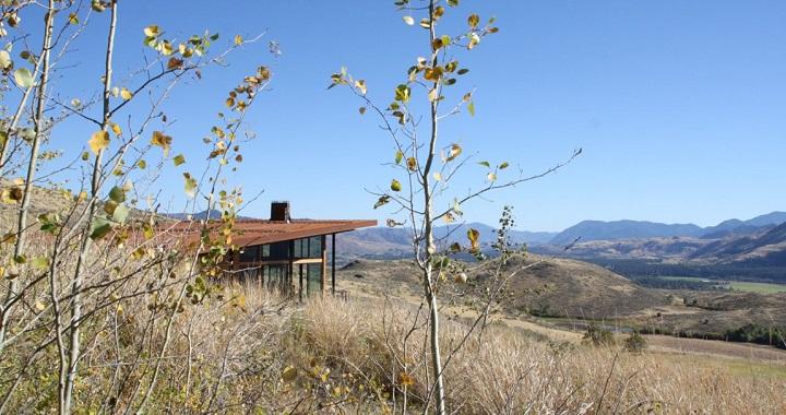 Casa New Caelifera