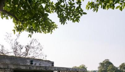 The Riparian House13