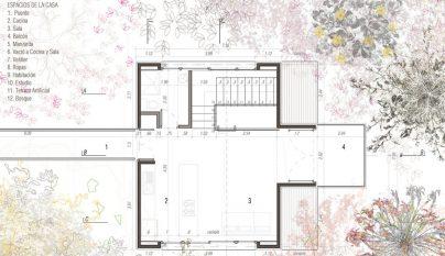 Casa Pajarera14