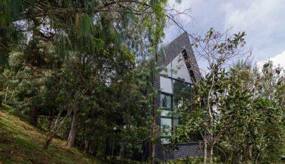 Casa Pajarera5