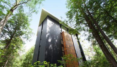 la-maison-du-sculpteur-jarnuszkiewicz3